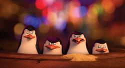 Die Pinguine aus Madagascar obrazok