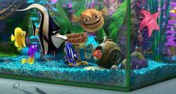 Findet Nemo obrazok