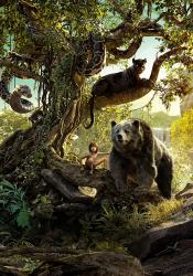 Kniha džungle obrazok