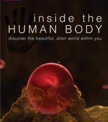 Uvnitř lidského těla