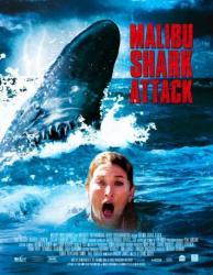 Žralok v Malibu