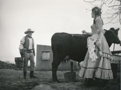 Šlechetný cowboy Sandy obrazok