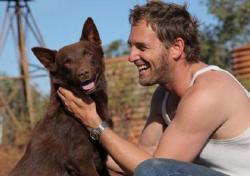 Red Dog - červený pes obrazok