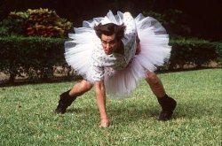 Ace Ventura: Zvířecí detektiv obrazok