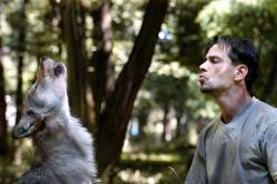 Zvířata v životě člověka obrazok