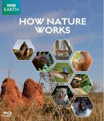 Jak to chodí v přírodě?