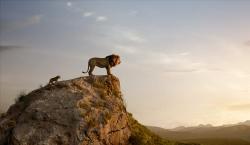 Lví král obrazok