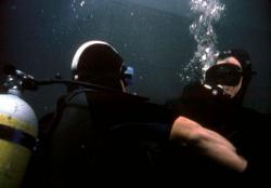 U.S. Seals 3: Na život a na smrť obrazok