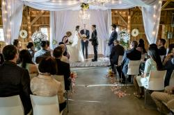 Svadobné zvony obrazok