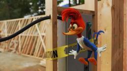 Woody Woodpecker obrazok