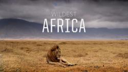 Nejdivočejší Afrika obrazok