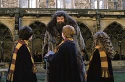 Harry Potter a Tajomná komnata obrazok