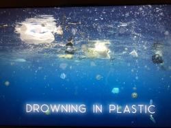 Tonutí v plastovém moři