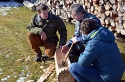 Dřevák dřevěný obrazok
