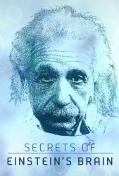 Tajemství Einsteinovy mysli
