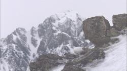 Království divočiny: Bělokur horský IV