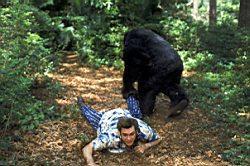 Ace Ventura 2: Volání divočiny obrazok