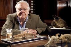 Přírodní kuriozity Davida Attenborougha obrazok