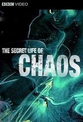 Tajný život chaosu