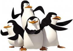 Tučniaky z Madagaskaru II obrazok