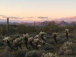 Na cestě po Arizoně obrazok