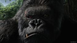 King Kong obrazok