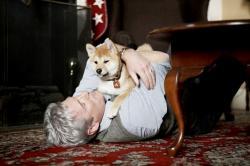 Hačikó: Príbeh psa obrazok