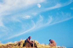 Biblia: Genesis obrazok