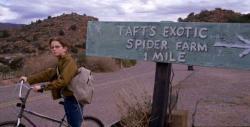 Pavoučí teror obrazok
