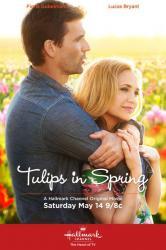 Tulipány pre Rose