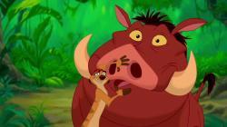 Timon a Pumbaa obrazok