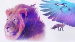 Království divočiny: Podivuhodná zvířata (6/12)