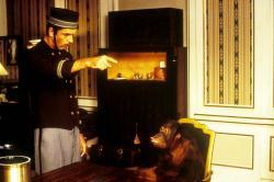 Dunston: Sám v hoteli obrazok