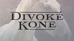 Divoké kone II